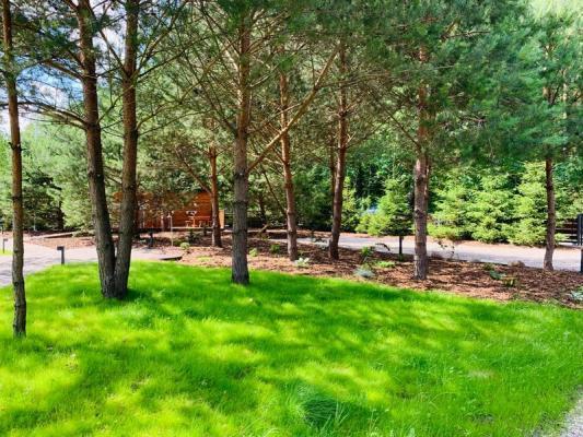 Realizacje i przemiany ogrodów 16